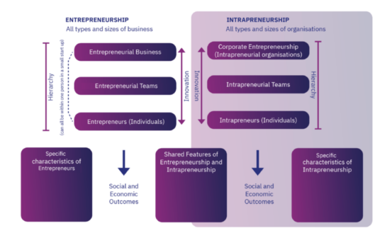 Descriptive model of intrapreneurship