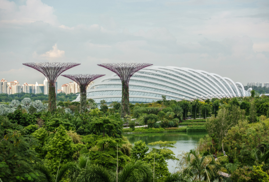 Supertree Groves. Garden by the Bay. Singapore.