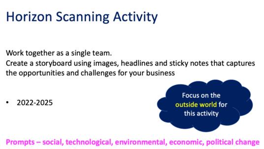 Horizon Scanning activity. Instructions for delegates.